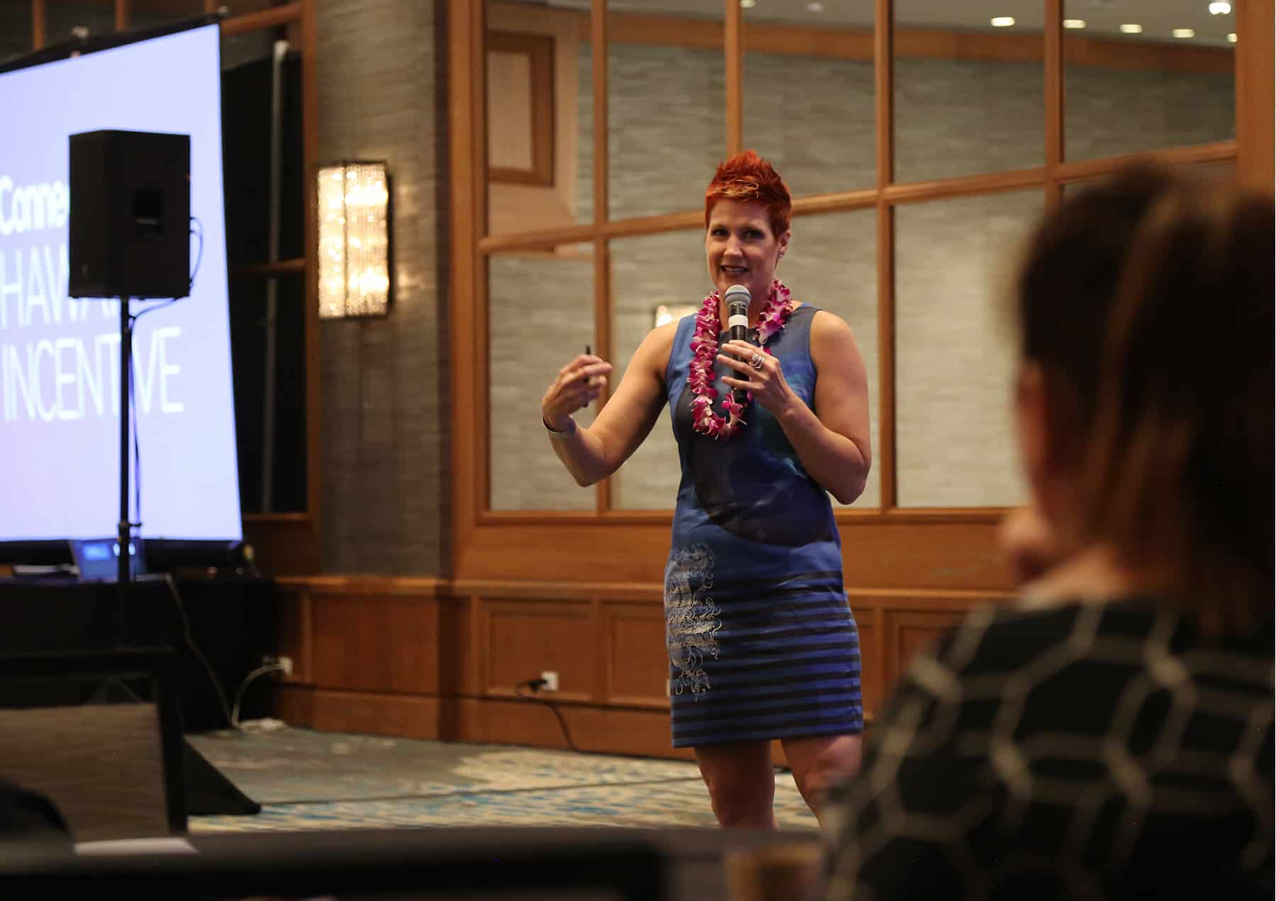 Anne Bonney CONNECT Hawaii 2019 speaking